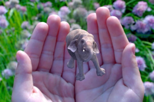 Magic Leap, l'étonnante start-up dans laquelle Google investit des millions