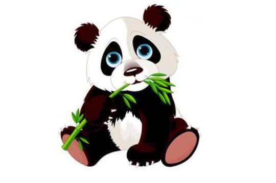 Google Panda 4.1: la liste des perdants et des gagnants aux Etats-Unis