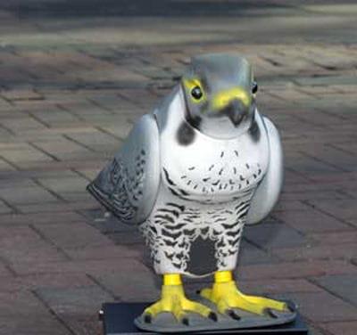 les féroces robops, prédateurs modernes du pigeon.