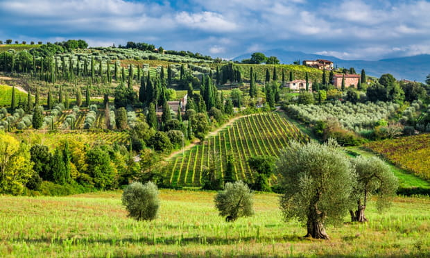 Toscane (Italie): suave