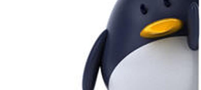 Mairie de Munich : 4 millions d'euros économisés grâce à Linux