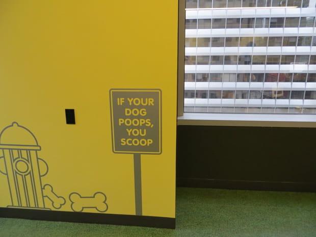 Les chiens au travail