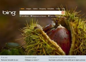 capture d'écran de bing.com