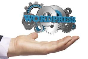 Huit plugins WordPress pour transformer un site en App mobile