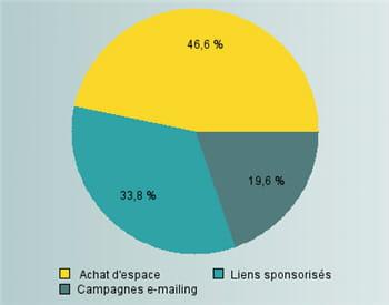 répartition des dépenses des annonceurs sur le web en 2007