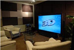 Luc Saint Elie (Panasonic):La télévision 3D ? Pas avant 2011