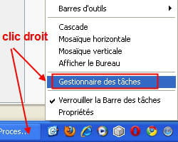 copie d'écran de la fonction gestionnaire des tâches de windows.