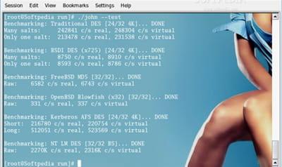 le logiciel john the ripper est conçu pourcasser les mots de passe.