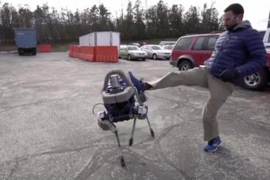 Vidéo : Spot, le chien-robot de Google qui résiste aux coups