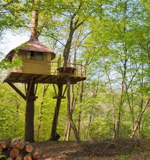 les campings s'arrachent cet habitat insolite.