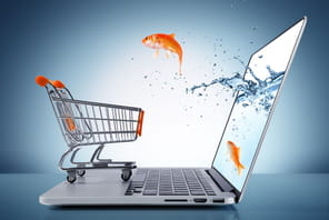 La distribution face à la transformation numérique
