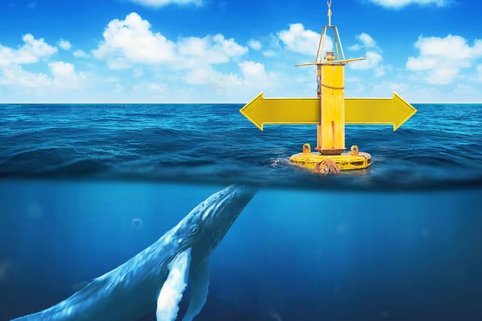 Docker: entre développeurs et grands comptes, la start-up se cherche