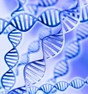 genosplice fait du séquençage adn àhaut débit.