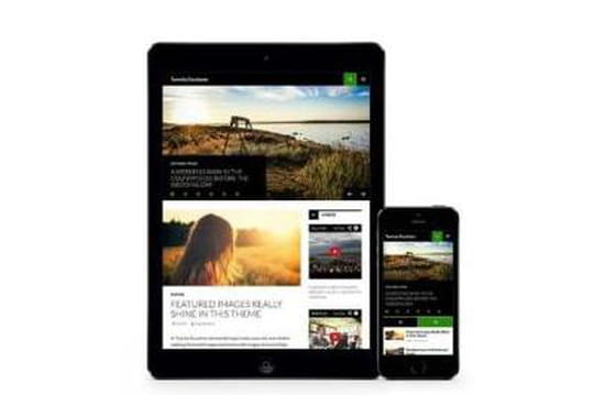 WordPress passe au Responsive Design