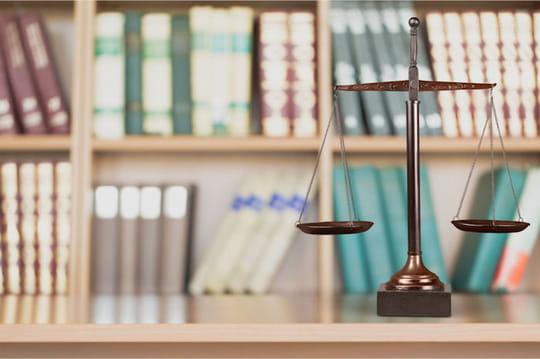 Mandataire judiciaire: définition, rôle et formation