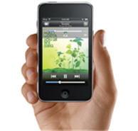 l'ipod touch, un modèle d'ergonomie et de fonctionnalités