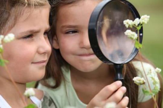 Confidentiel : Nature & Découvertes va ouvrir une marketplace