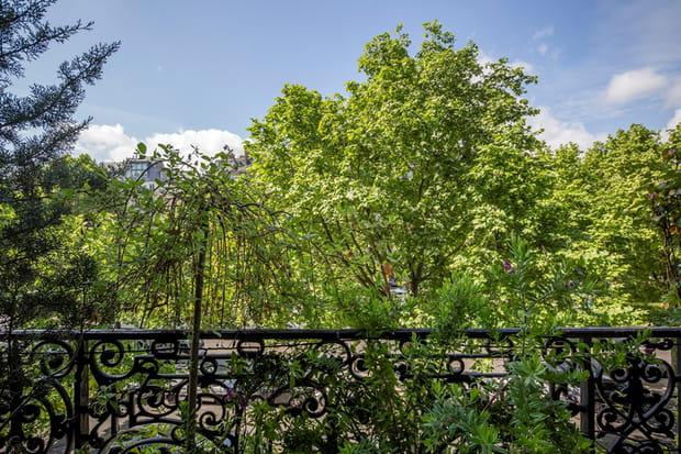 Une vue sur la cime des arbres et non sur les toits de Paris