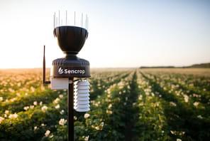 Sencrop lève 10millions de dollars pour se développer en Europe