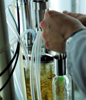 fermentalg a mis au point une technologie exclusive pour cultiver ses algues
