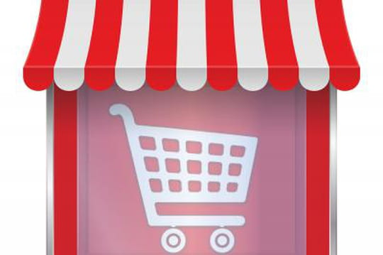 Internet en passe de devenir le magasin préféré des Français