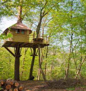 la cabane en l 39 air a atteint des sommets de popularit. Black Bedroom Furniture Sets. Home Design Ideas