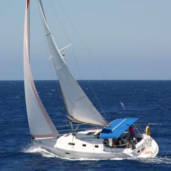 les roux sont numéro 1 mondial des bateaux à voiles.