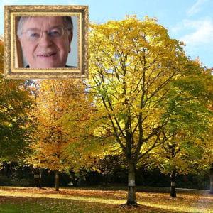 didier lombard ne jure que par ses arbres.