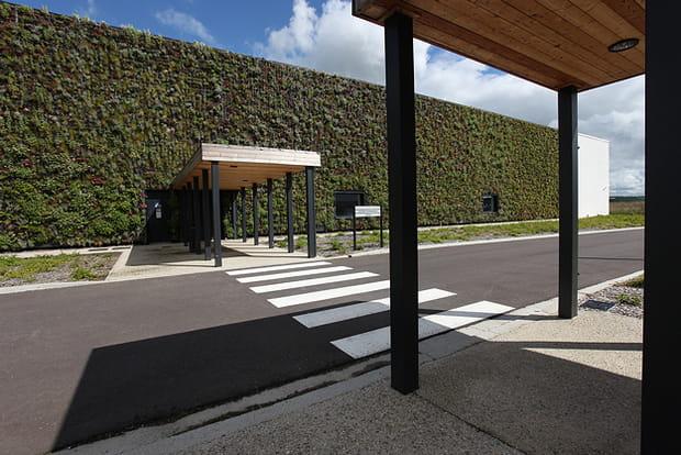 Un mur végétal pour habiller le bâtiment