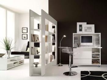 une bibliothèque de grande dimension cloisonnera idéalement votre espace