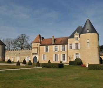 lvmh partage la propriété du château d'yquem avec les descendants de la famille