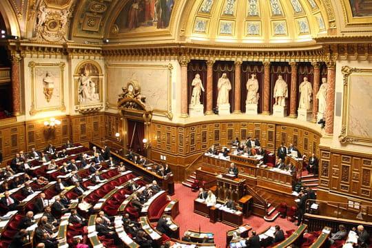 Le Sénat veut taxer l'économie collaborative et stopper la fraude à la TVA des e-marchands