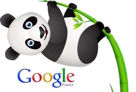 SEO : Panda désormais intégré au cœur de l'algorithme de Google