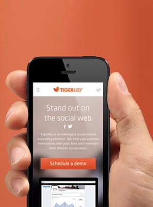 tigerlily gère la présence de 80marques sur les réseaux sociaux