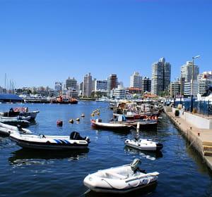 la france a exporté pour 164,92millions d'euros en uruguay en 2010.