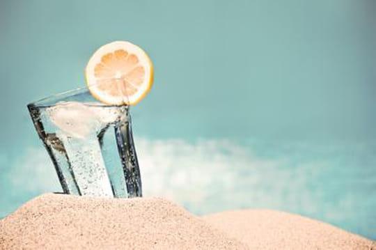 Ezzy, le soda relaxant, va-t-il détrôner les boissons énergisantes?
