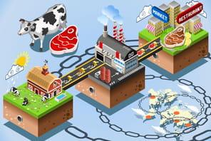 Aliments: avec la blockchain, tout se transforme mais rien ne se perd