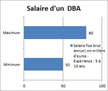 salaire d 39 un administrateur de bases de donn es entre 50 et 80 000 euros. Black Bedroom Furniture Sets. Home Design Ideas