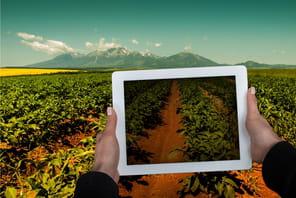 L'agroalimentaire face à la transformation numérique