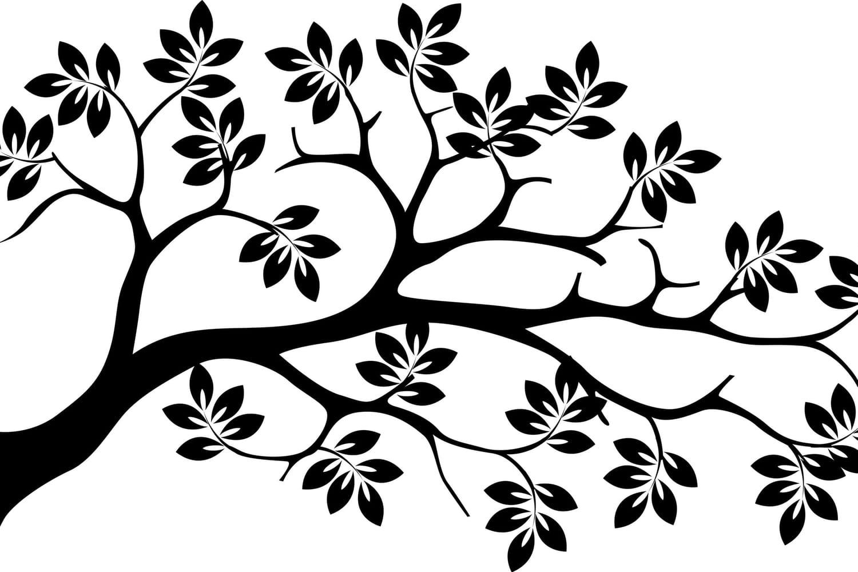Arborescence: définition et rôle pour le référencement naturel