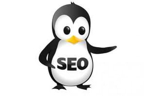 SEO : de nouvelles informations officielles étonnantes sur Penguin