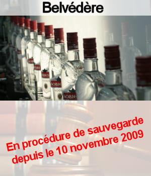 belvédère emploie 700 personnes en france.