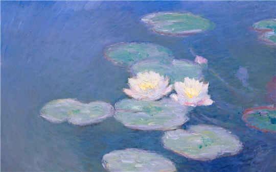 foto de Des Nympheas de Monet