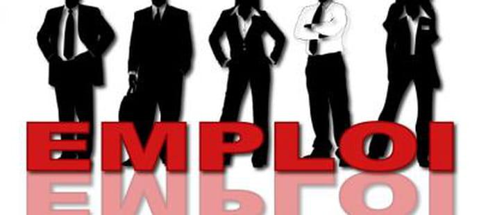 SSII: Micropole prévoit 250recrutements en 2013