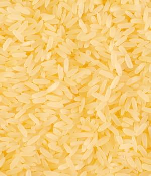 le riz doré, enrichi en vitamine a, se heurte encore à de nombreuses