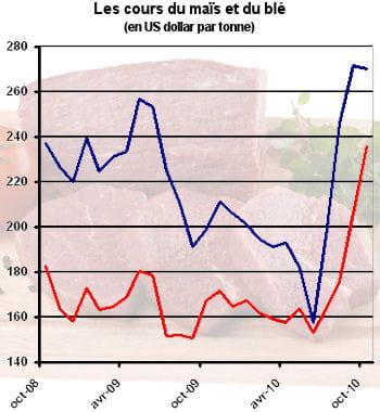 en bleu, le cours du maïs, en rouge, le cours du blé.