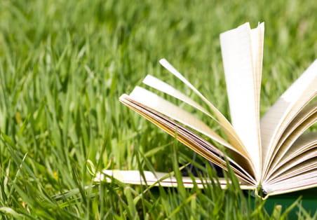 Les livres de managementà lire pendant l'été 2017