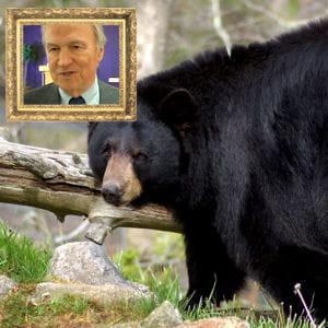 dans les années 90, sa rencontre avec un ours lui a fait une belle frayeur.
