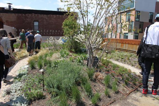 800 m² de jardin