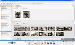 le logiciel picasa en pleine recherche d'images.